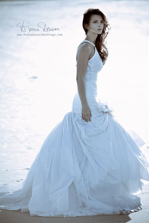 Alena Fede Bridal Collection 2010 My Charleston Fashion